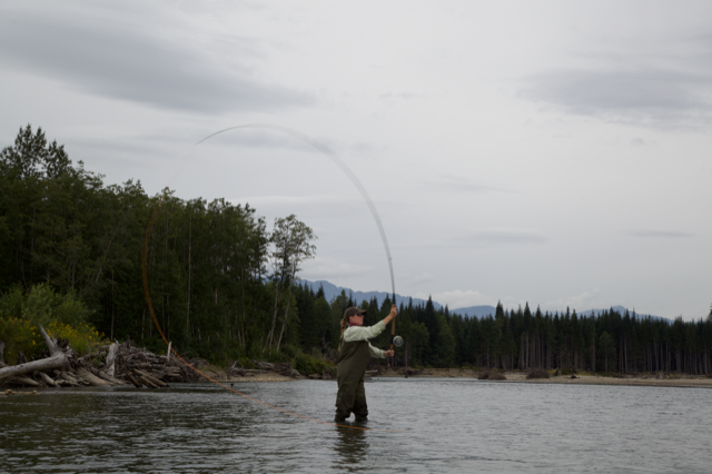 spey cast mid roll
