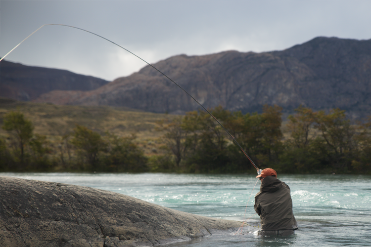 king salmon fishing tips setting the hook